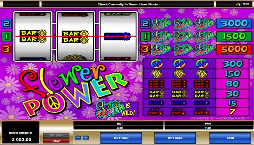 flower-power-slots-game-screenshot-zz2
