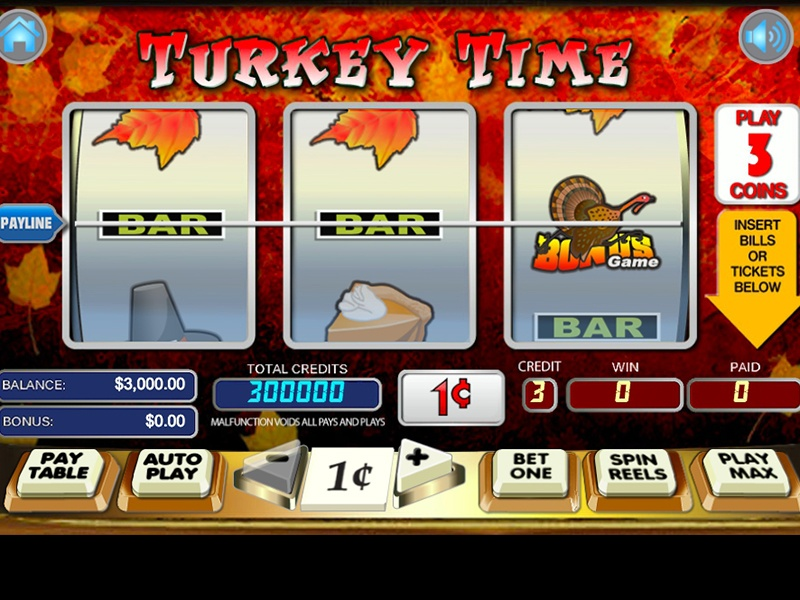 turkey-time-slots-game-screenshot-zry