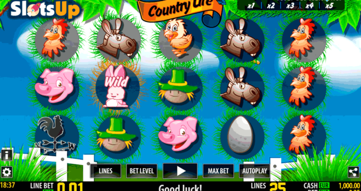 country-life-slots-game-screenshot-5t8