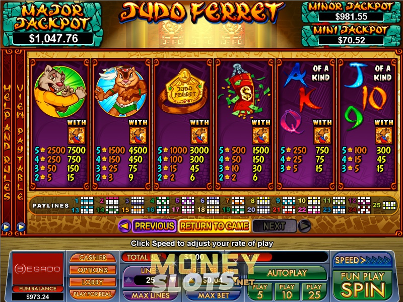 judo-ferret-slots-game-screenshot-dtn