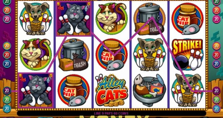 alley-cats-slots-game-screenshot-sql