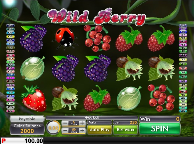 wild-berry-slots-game-screenshot-psl