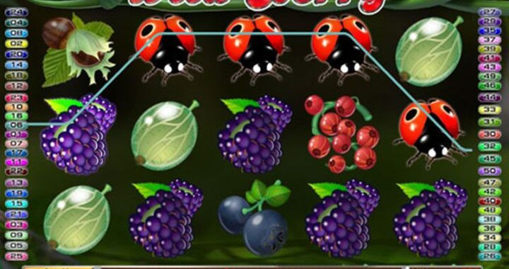 wild-berry-50-line-slots-game-screenshot-hfp